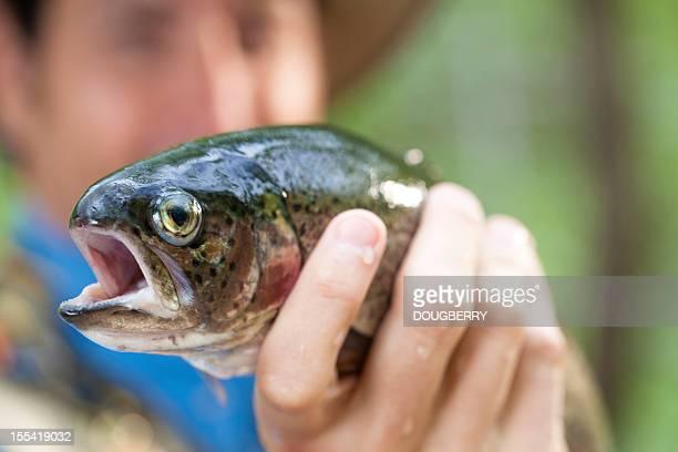 Pêche à la mouche prise