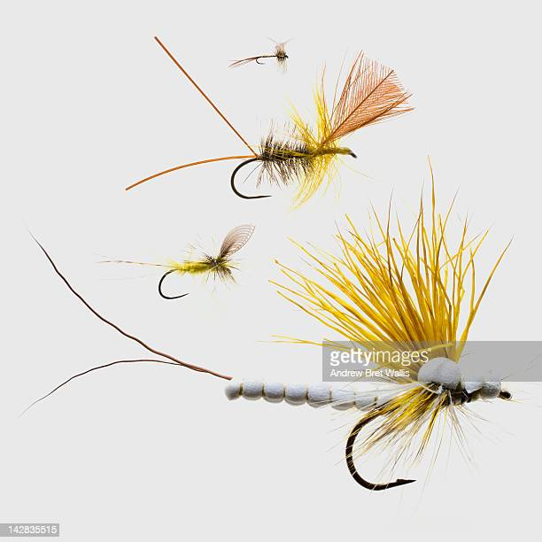 fly fishing lures - fly casting stock pictures, royalty-free photos & images