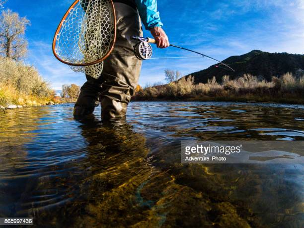 fly fishing on scenic river - fly casting stock pictures, royalty-free photos & images