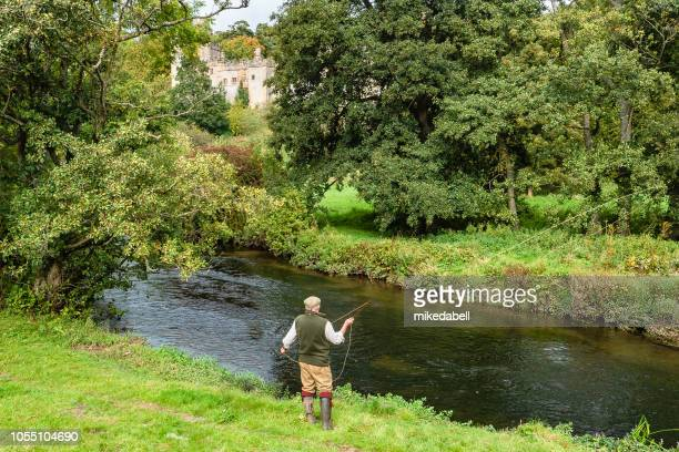 fly fishing - riverbank stock pictures, royalty-free photos & images