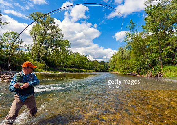 fly fishing with success - fly casting stock pictures, royalty-free photos & images