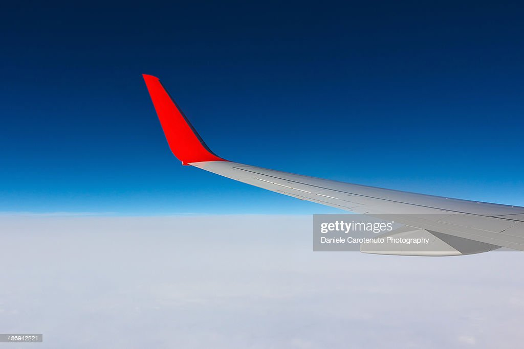 Fly high : Stock Photo