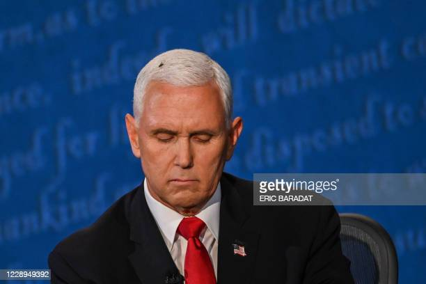 Fly rests on the head of US Vice President Mike Pence as he takes notes during the vice presidential debate against US Democratic vice presidential...