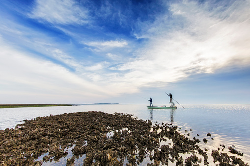 Flyfishing at coast in South Carolina USA 539220644