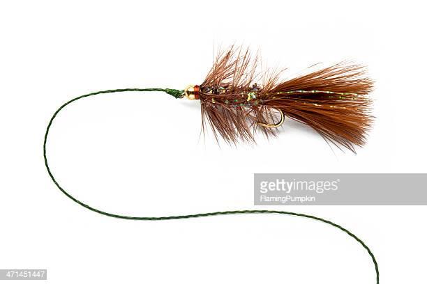 fly-fishing fly, or lure isolated on white background. - fiskekrok bildbanksfoton och bilder