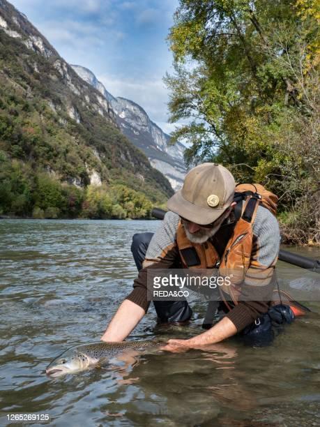 Flyfishing in Adige river, Trentino, Italy, Europe.