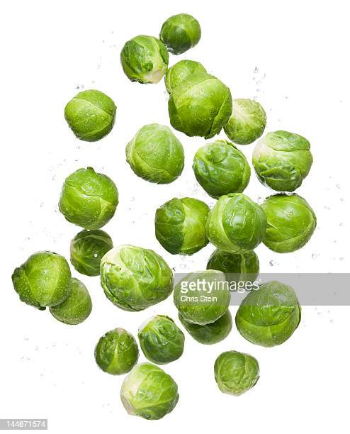 flying brussel sprouts - 芽キャベツ ストックフォトと画像