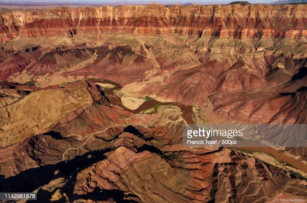 flying colorado river - helicopter photos stock pictures, royalty-free photos & images