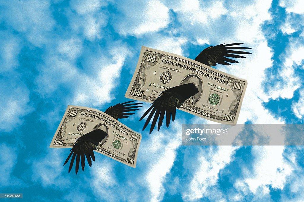 flying dollar bills : Stock Photo