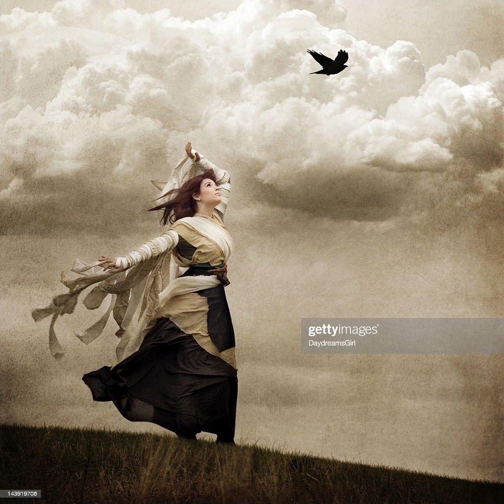 Fliegende Träume : Stock-Foto