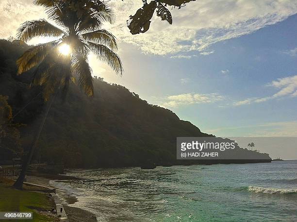 flying fish cove beach - christmas island stock pictures, royalty-free photos & images