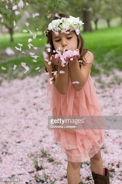 Flying flower petals
