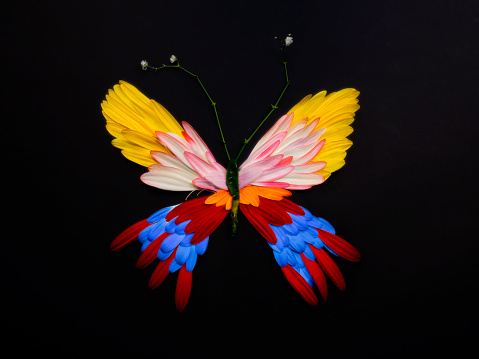 Flying Flowers - gettyimageskorea