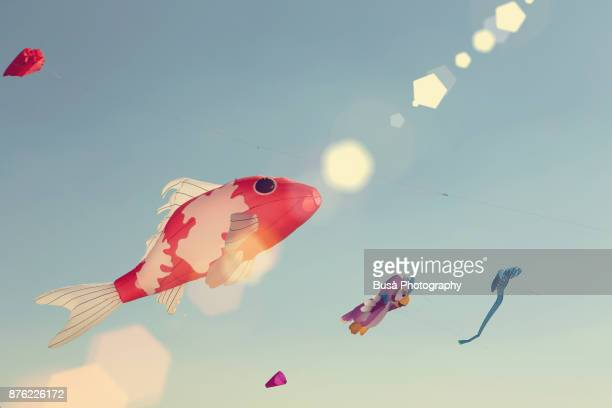 23 Flying Goldfish Pictures, Photos & Images - Getty Images