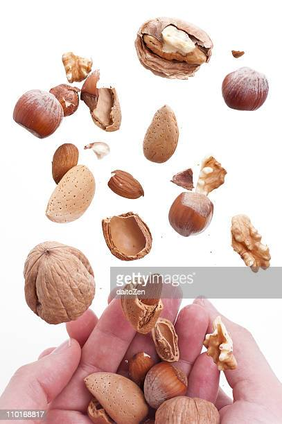 flying nuts - hazelnuts stock pictures, royalty-free photos & images