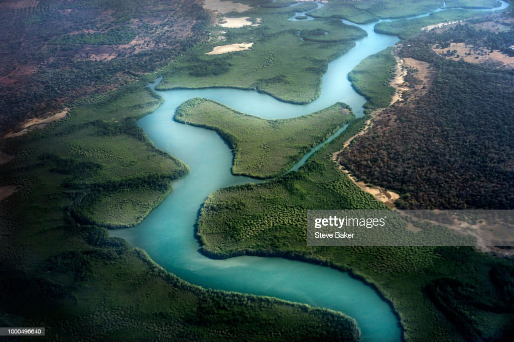 Flying over the Gambian Mangroves : Stock Photo