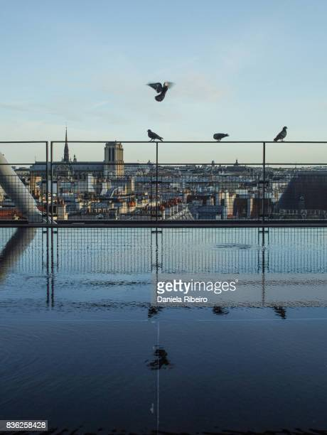 flying - centre pompidou stock pictures, royalty-free photos & images