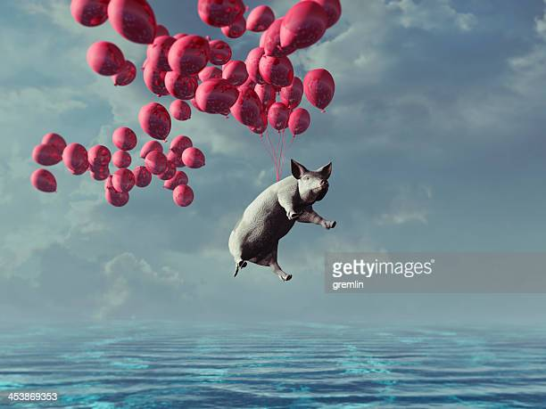 flying pig over the sea - flying stock photos and pictures