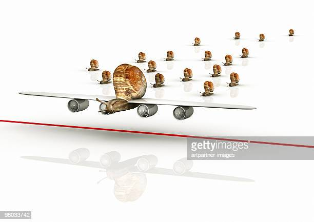 Flying Snail with Wings of a Plane overtaking