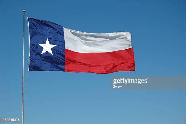 Flying Texas Flag