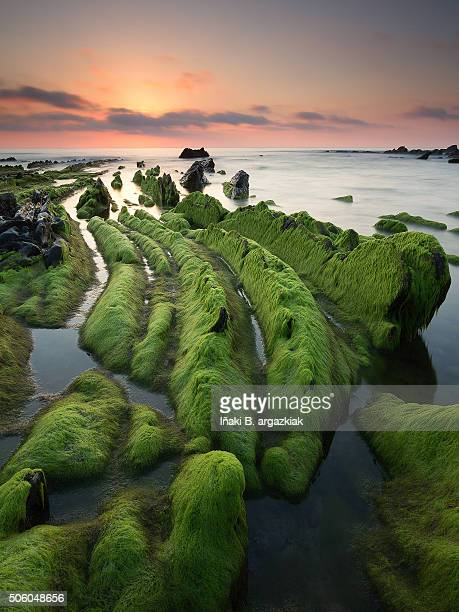 flysch rocks in barrika beach at the sunset - pais ストックフォトと画像