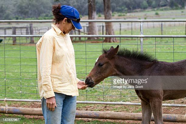 Foal standing next to woman