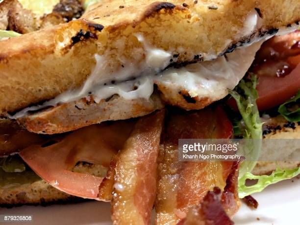 focaccia club sandwich - club sandwich stock pictures, royalty-free photos & images