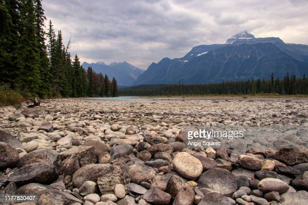focus on pebbles on river bank near jasper in canada - water's edge stock pictures, royalty-free photos & images