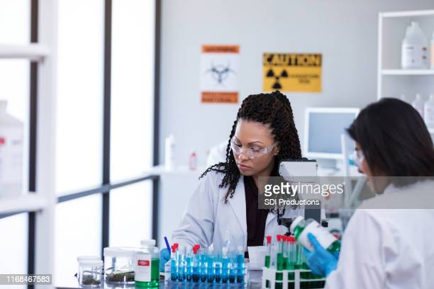 focused mid adult female scientist taking notes - microbiologist stock pictures, royalty-free photos & images