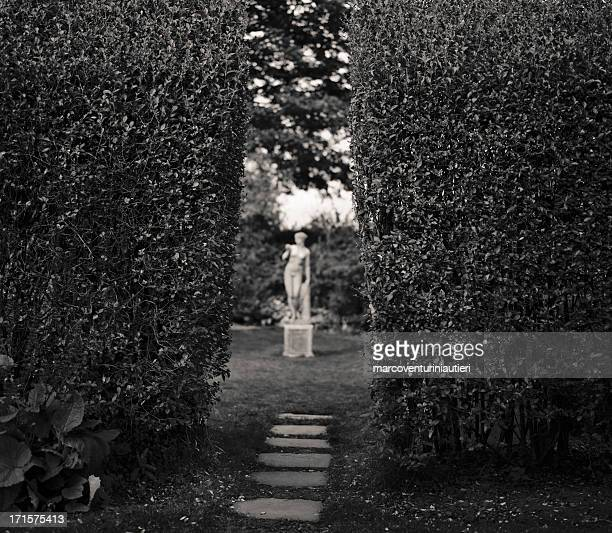 Focusing on the wrong thing - statue behind the hedges