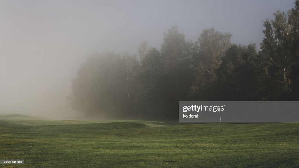 Fog above golf course : Stock Photo