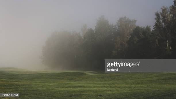 Fog above golf course