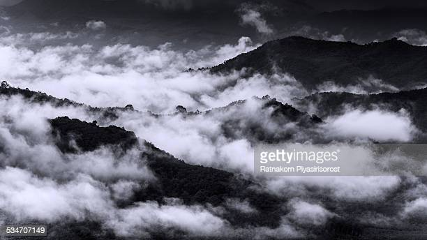 fog and cloud mountain valley landscape - hat yai foto e immagini stock