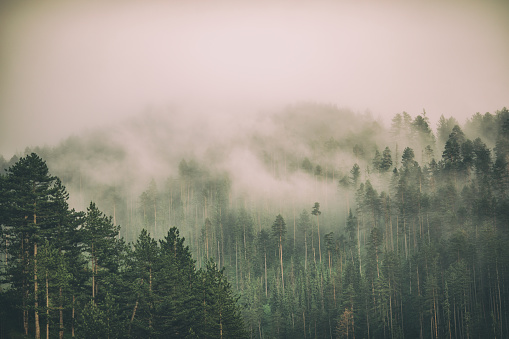 Fog and clouds on mountain 1160438555