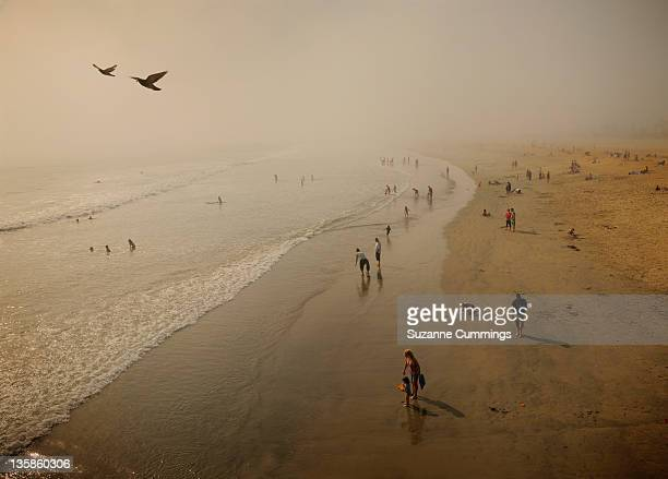 fog at beach - seal beach stock pictures, royalty-free photos & images