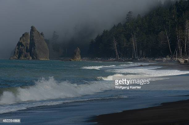 Fog bank over Rialto Beach on the coast of the Olympic Peninsula in the Olympic National Park in Washington State USA