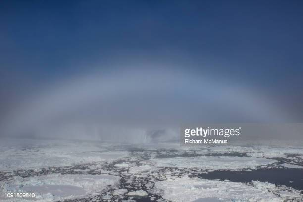 Fog bow in the Antarctic Sound
