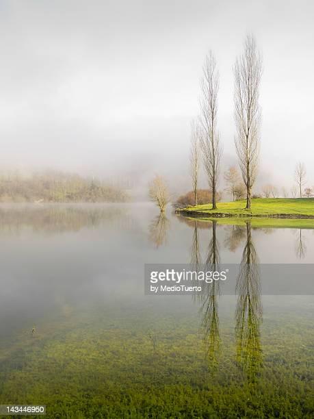 Fog in Maroño swamp
