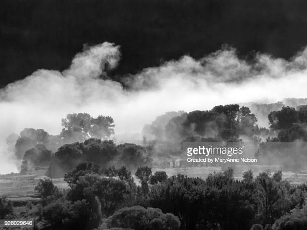 fog in the animas valley in black and white - mary moody fotografías e imágenes de stock