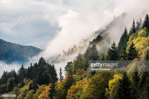Fog in the Hoellental valley, autumn, near Freiburg, Black Forest, Baden-Wuerttemberg, Germany