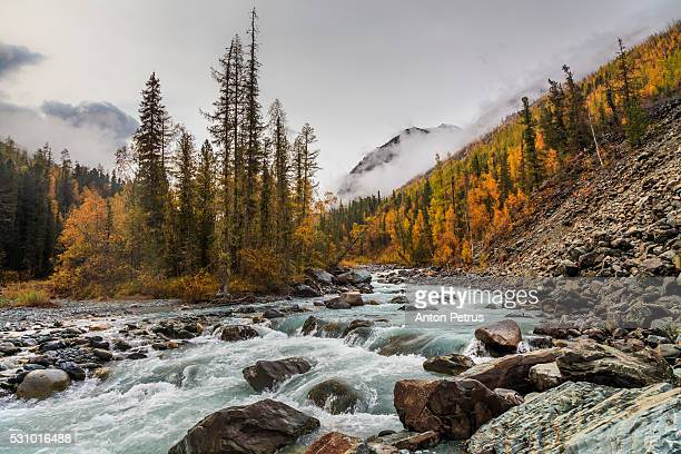 fog in the mountains in autumn - summits russia 2015 stock pictures, royalty-free photos & images