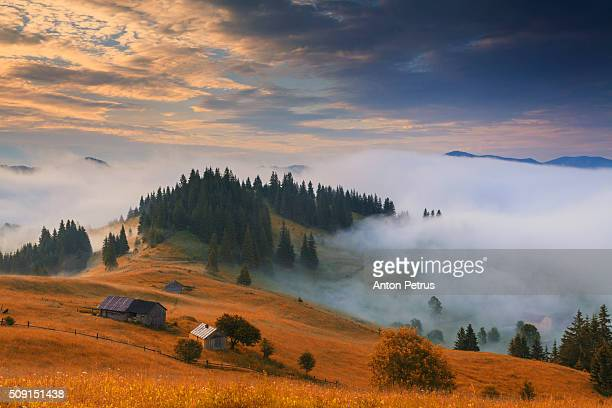 fog in the mountains - ukraine stock pictures, royalty-free photos & images