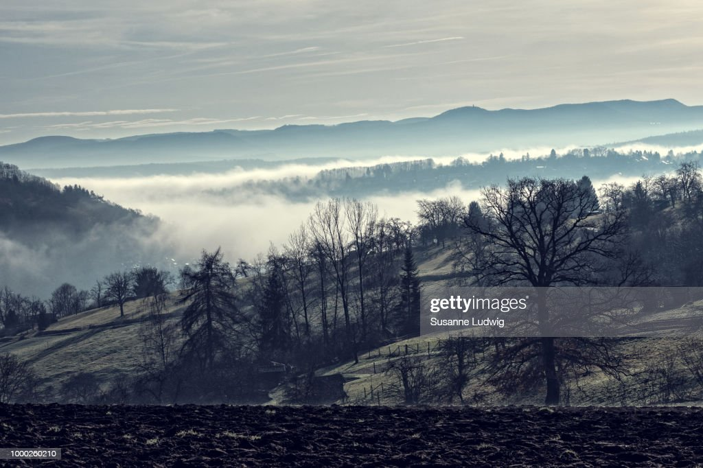 fog in the valley : Stock Photo