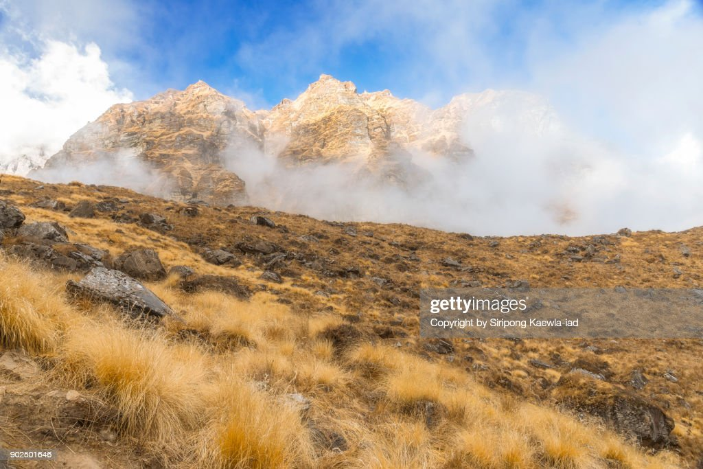 Fog is covering over the grassland and mountain near the Annapurna Base Camp (ABC). : Stock Photo