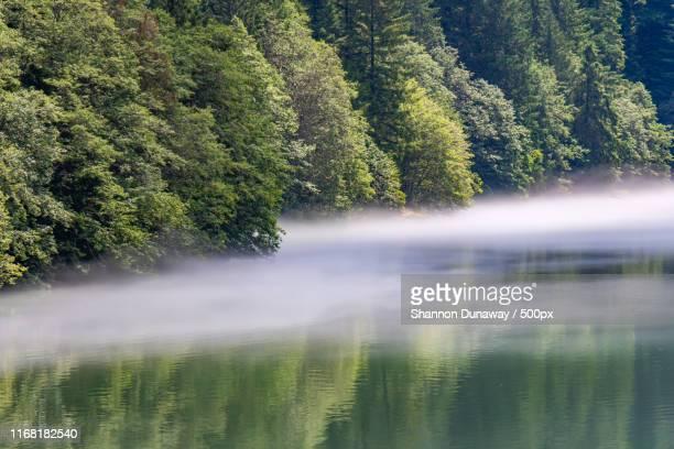 fog on diablo lake - diablo lake stock photos and pictures