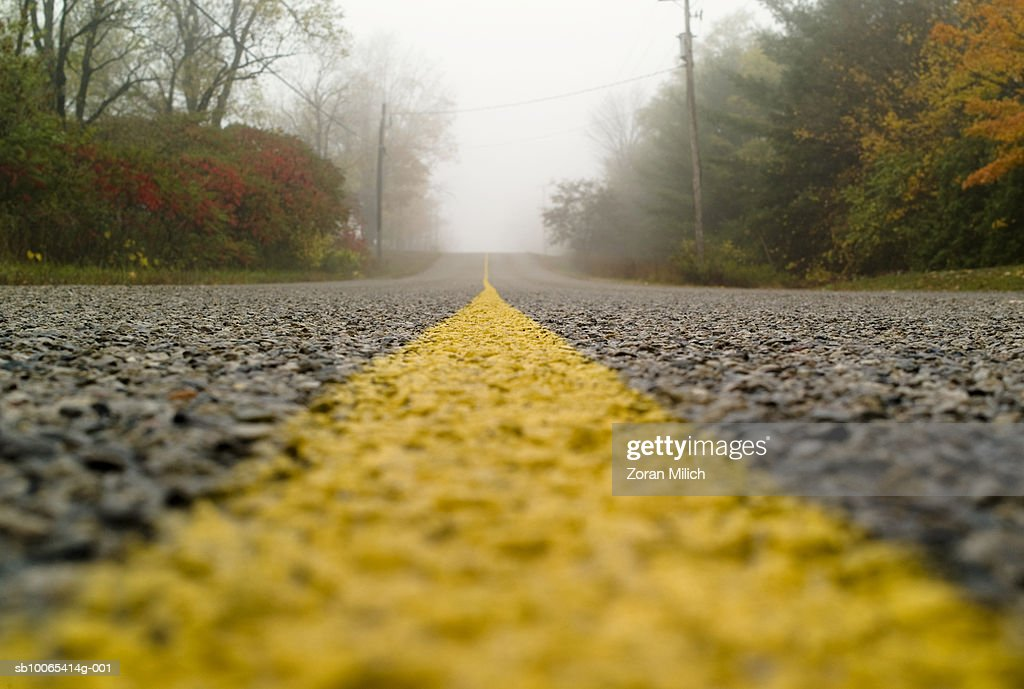 Fog on road : Foto stock
