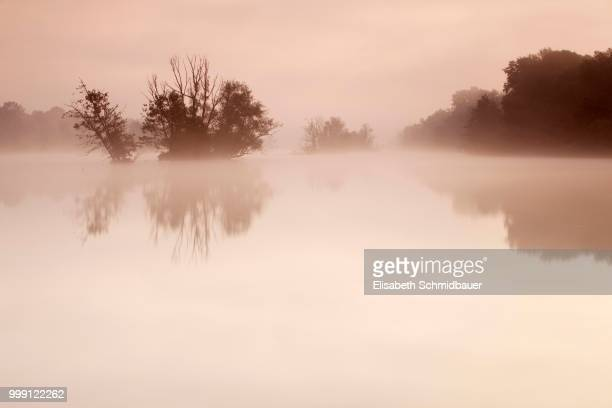 Fog on the Danube, Ingolstadt, Bavaria, Germany