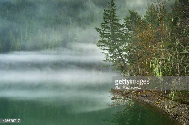 fog over baker lake, north cascade - 静かな情景 ストックフォトと画像