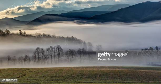 fog over cades cove - cades cove stock pictures, royalty-free photos & images