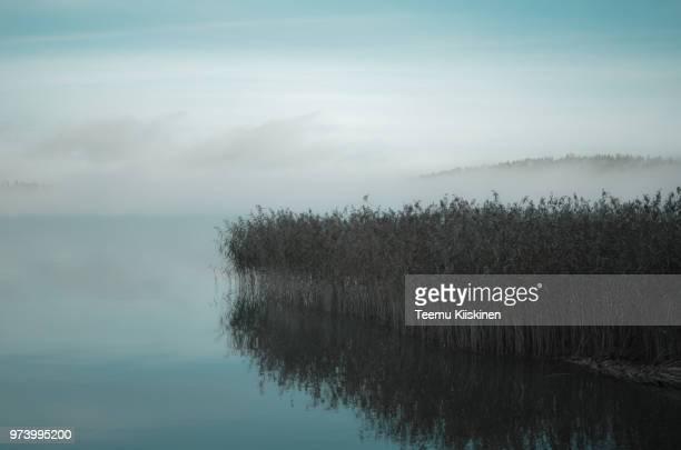 fog over lake, lahti, finland - lahti finland bildbanksfoton och bilder